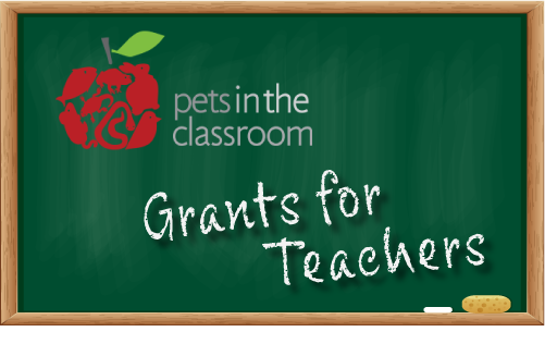 Pets-In-The-Classroom-Grants-Flukers
